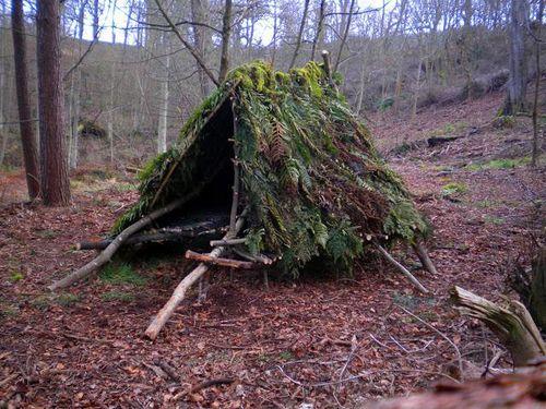 Как построить шалаш в лесу своими руками 24