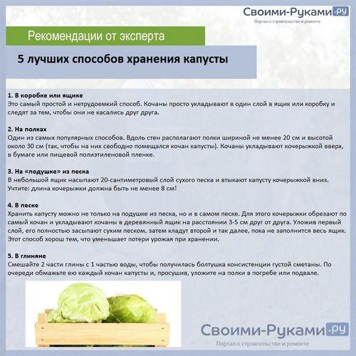 Температура хранения капусты белокочанной