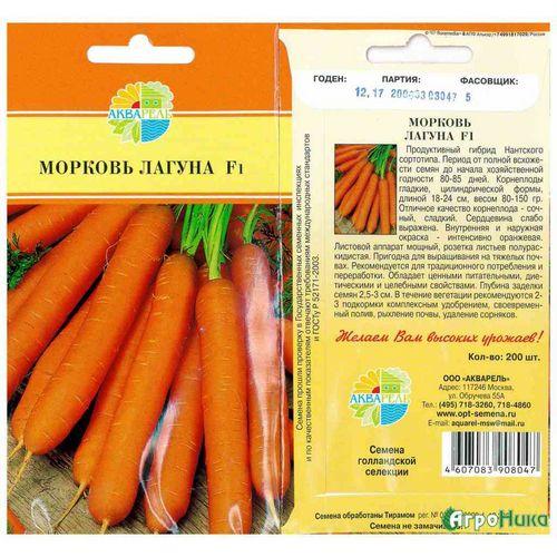 Лучшие сорта моркови для дальнего востока