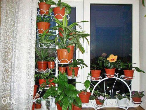 Выбираем красивую и удобную подставку для цветов на подоконник
